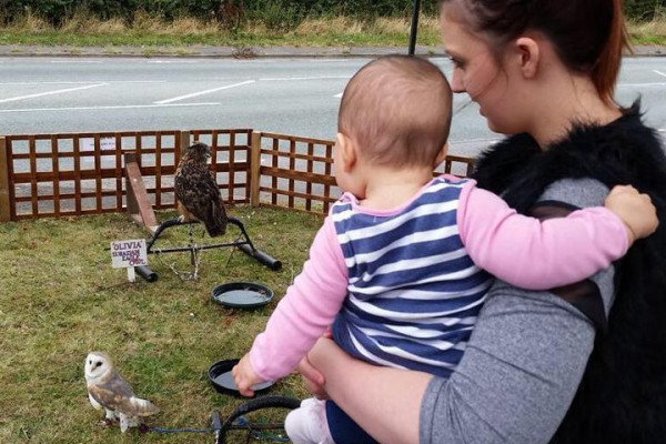 mother and child watch the owls